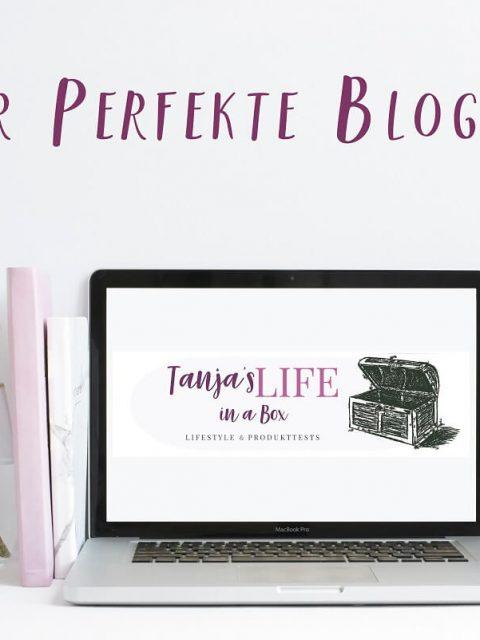 Der perfekte Blogger