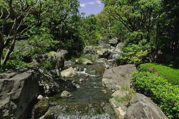 Creek in the Park of Sensō-ji, Asakusa, Tokyo, Japan