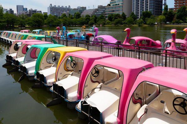 Boote auf dem Shinobazuno-Teich, Ueno Park, Tokyo, Japan