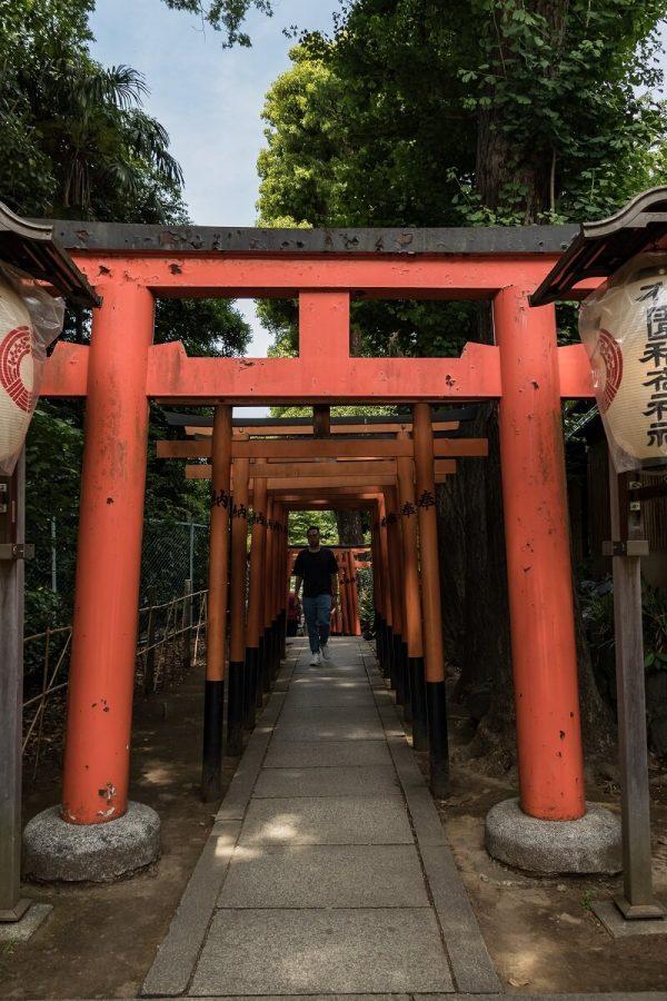 Sando zum Gojo Tenjinsha und Hanazono Inari Shrine, Ueno Park, Tokyo, Japan
