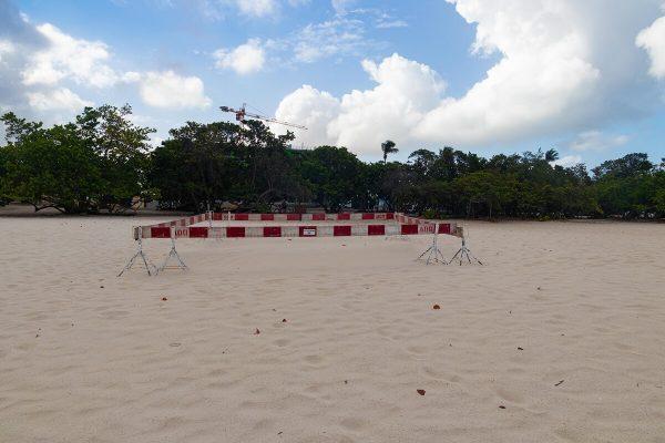 Schildkrötennest hinter Absperrung Eagle Beach Aruba