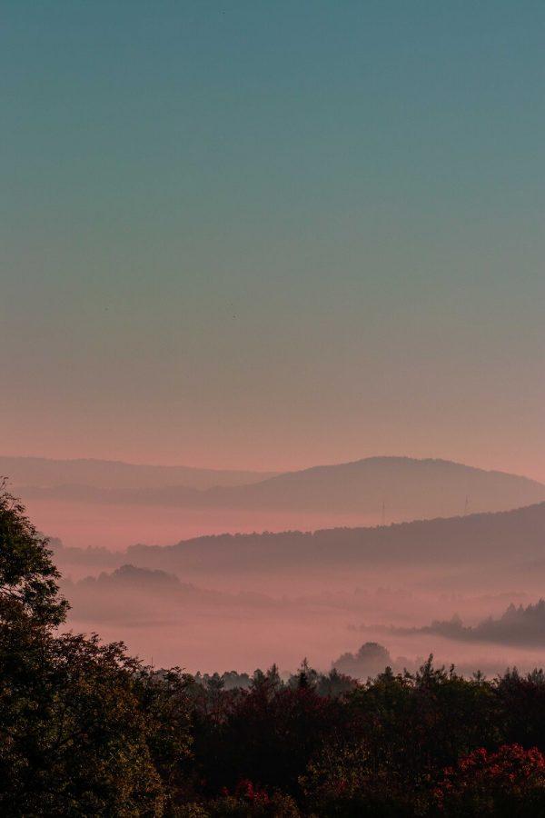 Fotos in Stockfotobörse verkaufen - pinker Nebel