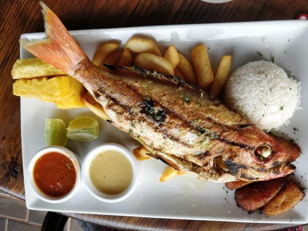 Red Snapper im Red Fish Aruba