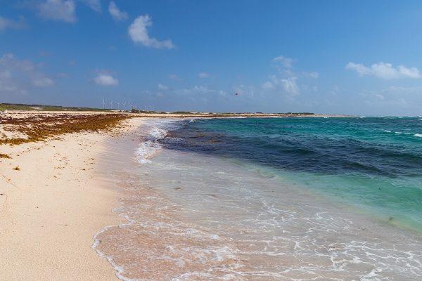Boca Grandi Strand Aruba